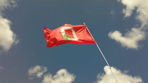 Buck flag
