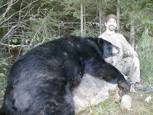 BEAR BIG